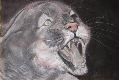 Panther Art Print by Rebecca Wiltfong Frisbee