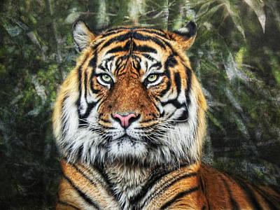 Bamboo Photograph - Panthera Tigris II by Joachim G Pinkawa