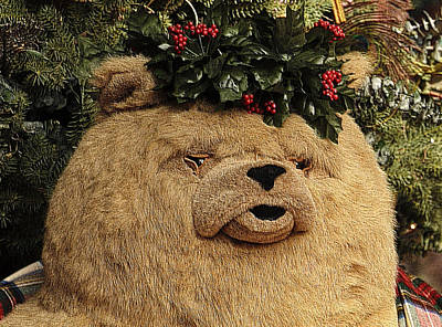 Photograph - Papa Bear Gets Christmas Spirit by Nadalyn Larsen