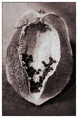 Photograph - Papaya Art Black And White by For Ninety One Days