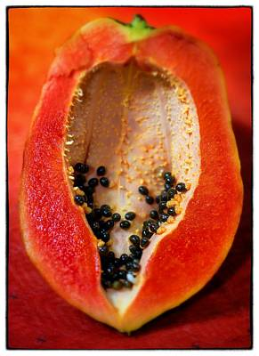 Photograph - Papaya Art by For Ninety One Days