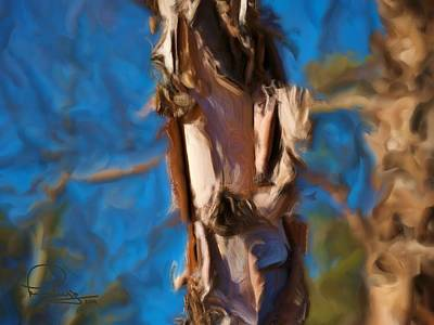 Art Print featuring the photograph Paper Bark Birch by Ludwig Keck