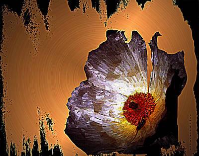 Paper Flower Art Print by Irma BACKELANT GALLERIES