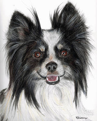 Papillion Painting - Papillon Painting by Kate Sumners