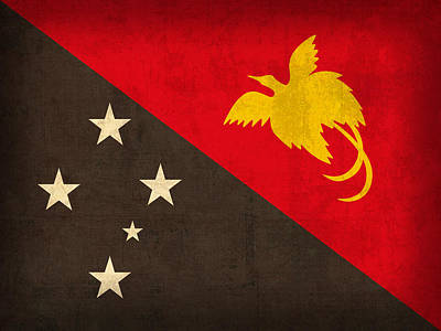 Guinea Wall Art - Mixed Media - Papua New Guinea Flag Vintage Distressed Finish by Design Turnpike