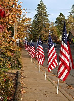 Photograph - Parade Of Flags by Michele Myers