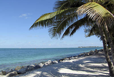 Paradise - Key West Florida Art Print