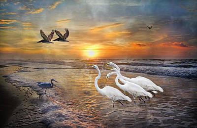 Egret Digital Art - Paradise Dreamland  by Betsy Knapp