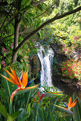 Exotic Photograph - Paradise Falls by Doug Kreuger