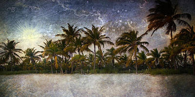 Photograph - Paradise Found by Ellen Heaverlo