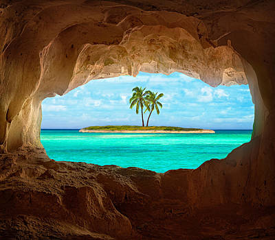 Palm Trees Photograph - Paradise by Matt Anderson