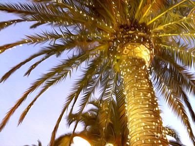 Naples Beach Wall Art - Photograph - Paradise Palm by Jon Neidert