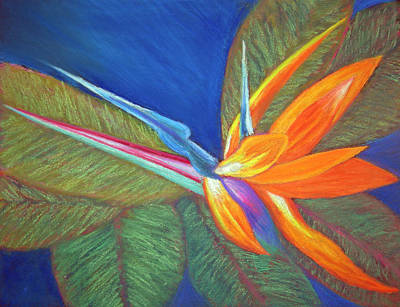 Painting - Paradise Pastel by Patricia Beebe