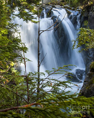 Photograph - Paradise River Falls by Chuck Flewelling