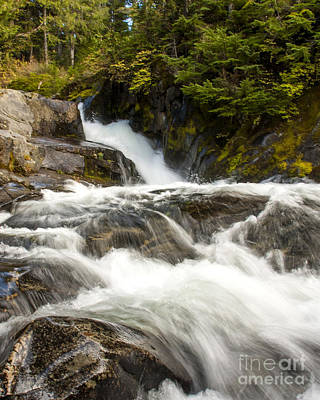 Photograph - Paradise River Rapids by Chuck Flewelling