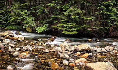 Photograph - Paradise River by Stuart Gordon