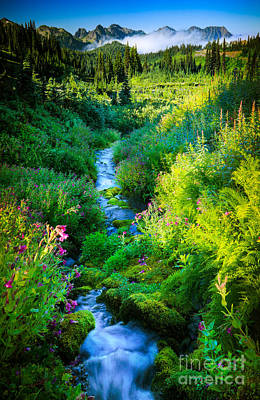 Park Scene Photograph - Paradise Stream by Inge Johnsson