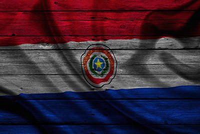 Flag Pole Photograph - Paraguay by Joe Hamilton