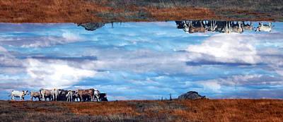 Photograph - Parallel Universe by Jim Vance