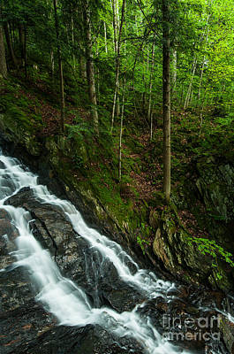 Forest Photograph - Parallel Worlds - Vermont Waterfall by JG Coleman