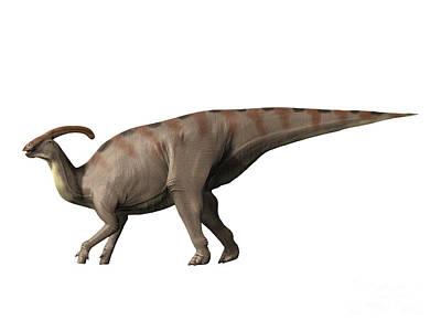 Parasaurolophus Dinosaur Art Print by Nobumichi Tamura