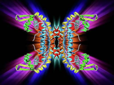 Parathion Hydrolase Enzyme Art Print by Laguna Design