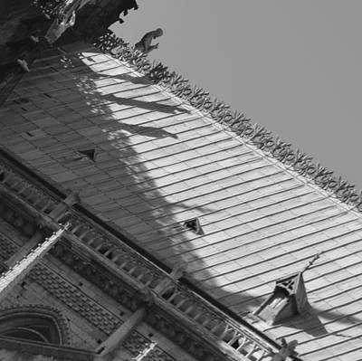 Photograph - Paris Roof by Cheryl Miller
