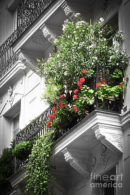 Flower Design Photograph - Paris Balcony by Elena Elisseeva
