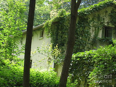 Photograph - Paris - Green House by HEVi FineArt