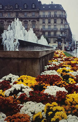 Photograph - Paris In Autumn  by Patricia Januszkiewicz