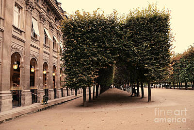 Photograph - Paris Palais Royal French Palace - Paris Palais Royal Architecture - Paris Autumn Fall Trees  by Kathy Fornal