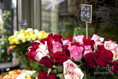 Photograph - Paris Roses by Brian Jannsen