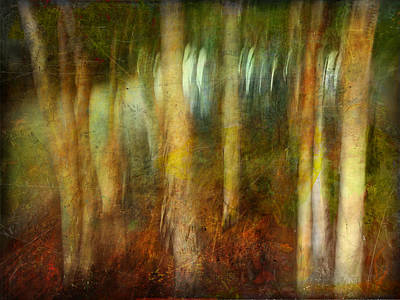 Art Print featuring the photograph Park #8. Memory Of Trees by Alfredo Gonzalez