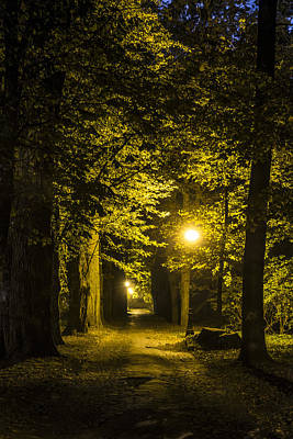 Streetlight Photograph - park Alley by Jaroslaw Grudzinski