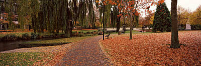 Fallen Leaf Photograph - Park At Banks Of The Avon River by Panoramic Images