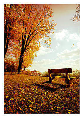 Park Bench Art Print by Chris Babcock