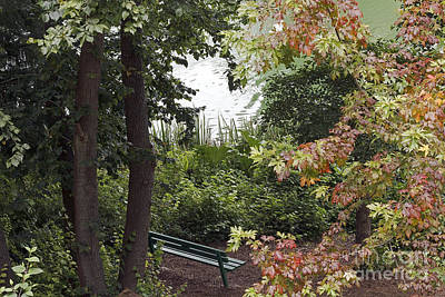 Art Print featuring the photograph Park Bench by Kate Brown