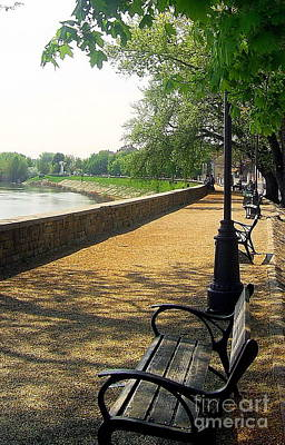 Photograph - Park Bench by Tamyra Crossley