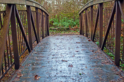 Photograph - Park Bridge by Tikvah's Hope