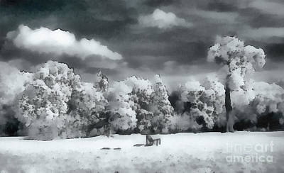 Half Dome Painting - Park In Infrared by Odon Czintos
