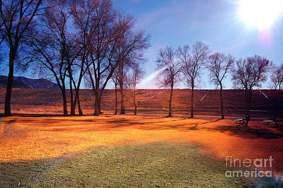 Park In Mcgill Near Ely Nv In The Evening Hours Art Print