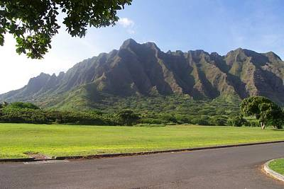 Park On Oahu Art Print