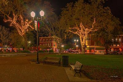 Photograph - Park Scene by Tim Bryan