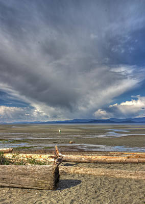 Parksville Beach - Low Tide Art Print by Randy Hall