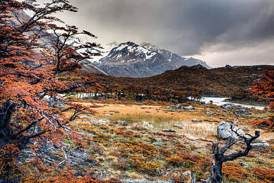 Photograph - Parque Nacional Los Glaciares by Roman St