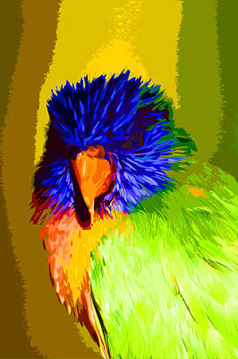 Photograph - Parrot by Carol McCarty