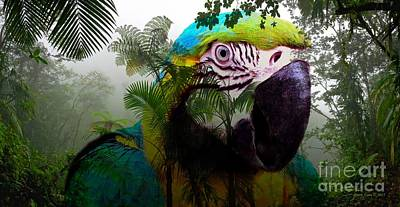 Photograph - Parrot In The Jungle by Annie Zeno