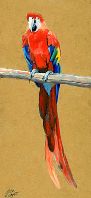 Parrot Perch Art Print by Alice Leggett