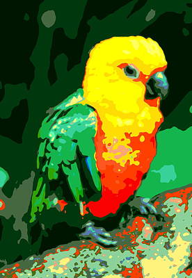 Photograph - Parrot by Ramona Johnston