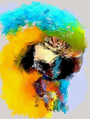 Enjoy Digital Art - Parrot Thinking... by Yury Malkov